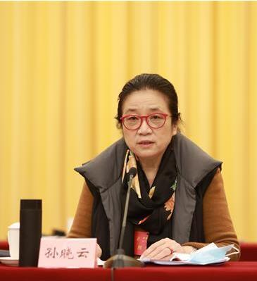 孙晓云当选中国书法家协会第八届主席